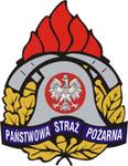 Strażacy PSP (Państwowa Straż Pożarna)
